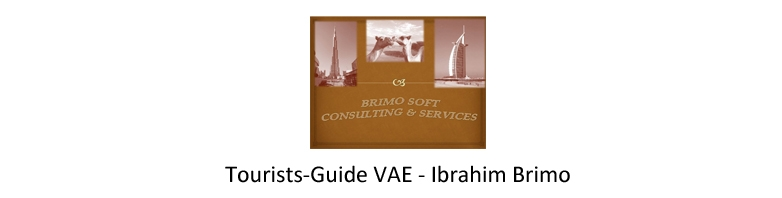 Brimo Soft Services